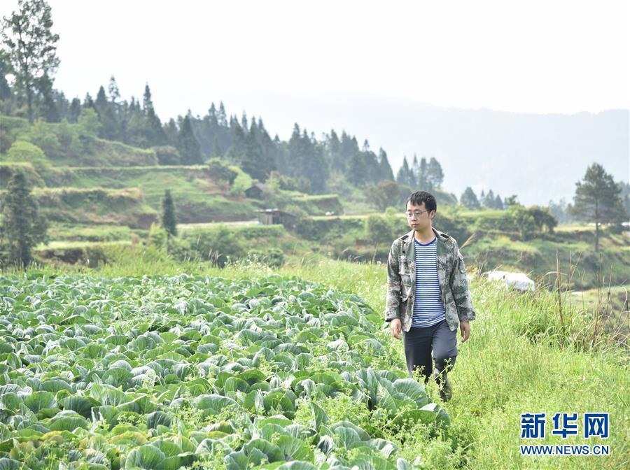 新华网评:为实现脱贫梦书写无悔青春