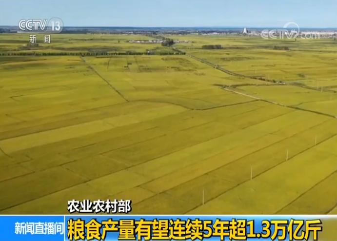 農業農村部:糧食產量有望連續5年超1.3萬億斤