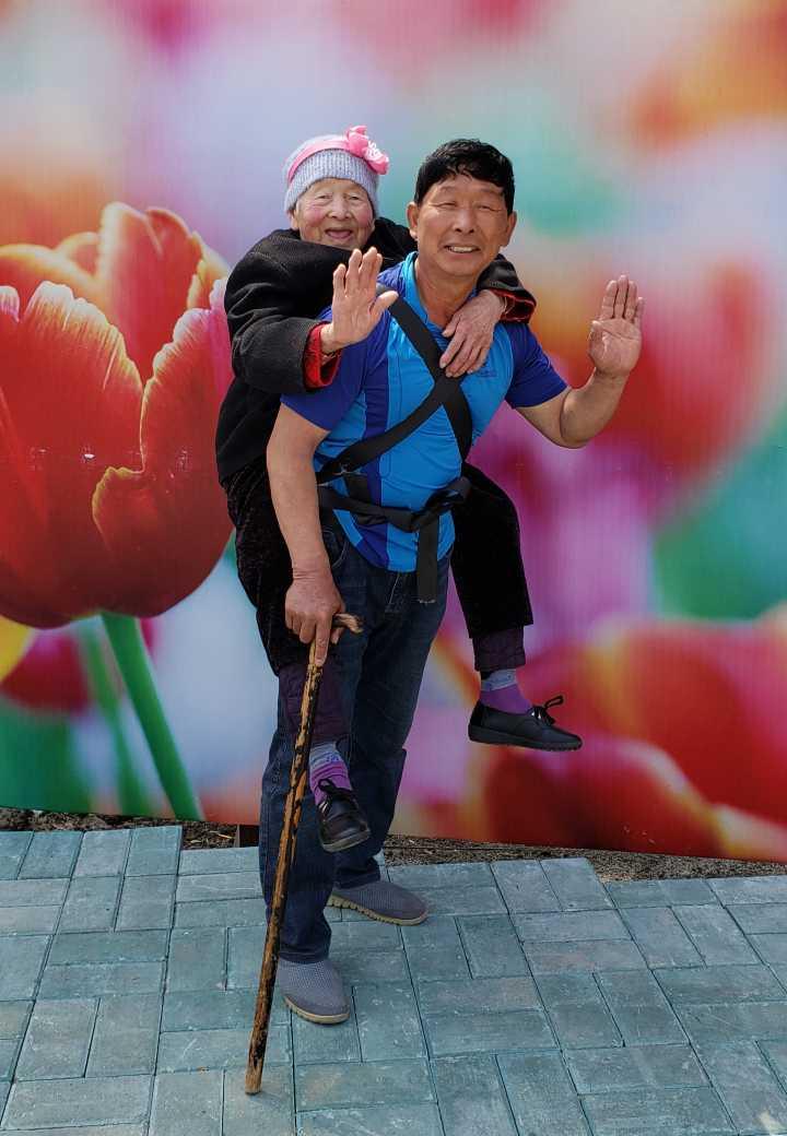 龙井退休司机背着93岁母亲登山赏花海