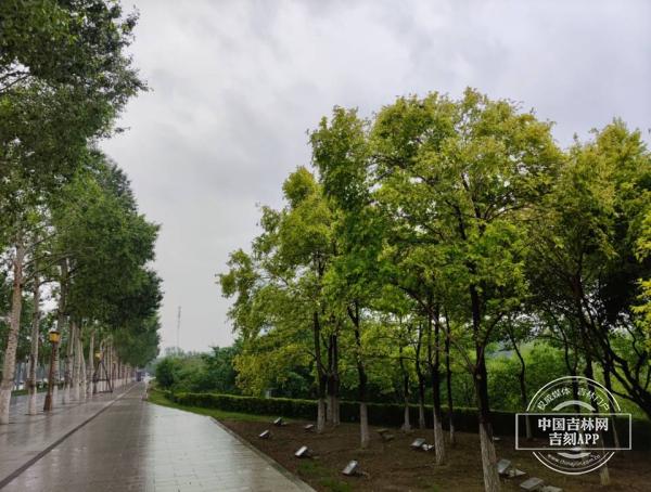10日14时,雨带位于长春东部、吉林西部、辽源、通化、白山西部区域