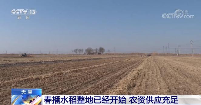 天津:春播水稻整地已经开始 农资供应充足